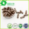 Duanwood Reishi Mushroom Extract Immune Booster Capsules