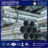 Q235 Hot Dipped Galvanized Steel Pipe with PE Ends