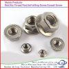 Carbon Steel DIN6923 Hex Flange/Hex Washer Head Nut Galvanized