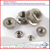 Carbon Steel DIN6923 Hex Flange Nut Galvanized