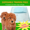 "Popular 22""X22"" Disposable Puppy Pads (TP22)"