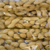 PA/PE Films or Pouches for Nut Packaging (HAWK-7500-11)