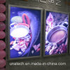 Indoor Beauty Shops Store Club Media Advertising Hot Sale Ultra Slim Snap Frame LED Light Box