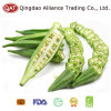 IQF Frozen Okra with Brc Certification