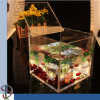 Clear Perspex Fish Bowl on Office