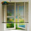 SKD 2017 New Style Sunshade Window Curtain Lantex Roller Blinds