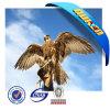 Design 3D Eagle Lenticular Poster