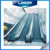 35 Degree Comercial Escalator
