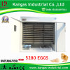 Holding 5000 Eggs Cheap Digital Automatic Industrial Chicken Incubator (KP-25)