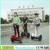 Special Design New Electric Trike Scooter (Eswing-III)