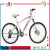 Factory Cheap Wholesale Popular Mountain Bike