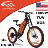 Lithium Battery 48V1500W Electric Bikes
