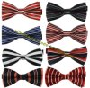 Men′s Fashion Striped Designs Adjustable Polyester Bowties