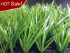 2008 Olympic Games Artificial Grass (A350119GD8821)