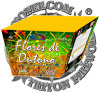 Autumn Flower 25 Shots Fan Fireworks/ Cake Fireworks/ Factory Direct Price