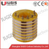 Traditional Slip Ring