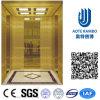 Home Hydraulic Villa Elevator with Italy Gmv System (RLS-230)