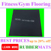Sport Coin Rubber Gym Flooring on Sale