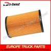 Fuel Cartridge Filter for DAF Truck (DB-M18-001)