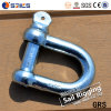 Lifting Free Forged Large Dee Shackle