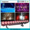 Rgbaw 5in1 12PCS*25W Super Bright LED Bar Lights