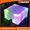 Giant Outdoor LED Light Inflatable Camping Exhibition Tent (Tent1-850)