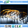 Easy Install Bentable Backlight S Shape SMD2835 Flexible 6mm LED Strip