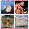 Lean Muscle Building Steroid Powder Primobolan Methenolone Enanthate CAS: 303-42-4