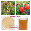 Rose Hip Extract, Polyphenols 10%, Vitamin C 3%