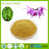20% Double Icariin Horny Goat Weed Extract Powder