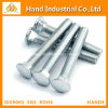 Best Price DIN603 Stock 316 Stainless Steel Carriage Bolt