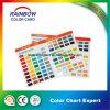 Promotional Pantone Colour Card for Oil-Base Paint