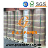 Competitive Price Large Roll Thermal Paper Roll for Printing