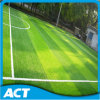 Synthetic Turf for Football.