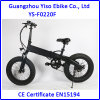 2017 New Design 20 Inch Snow Electric Fat Bike