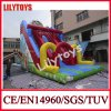 Lilytoys Inflatable Moving Slide for Sale