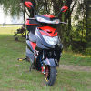 800W Mini Electric Motorcycle for North America Market