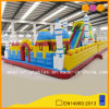 Kid Gift Inflatable Toy Inflatable Funcity for Decoration (AQ1301)