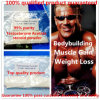 Muscle Growth Steroid 99% Purity Testosterone Acetate Raw Powder