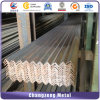 Factory Price Trustworthy Steel Angle Iron with Sample (CZ-A31)