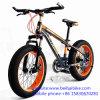 China Cheap Carbon Beach Snow Bike