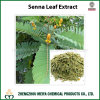 High Quality Senna Leaf / Cassia Angustifolia Powder Extract with Sennosides