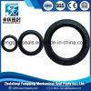 Auto Parts Hydraulic Viton/FKM Rubber Tc Oil Seal