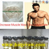 Injectable Anabolic Steroid Powder Masteron Enanthate Drostanolone Enanthate 150mg