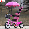 Hot Umbrella Baby Tricycle Children Tricycle with Push