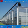 High Quality Customized Glass/Plastic Film/PC Sheet Greenhouse with Hydroponic System for Angriculture&Aquaponics&Cucumber