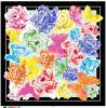 New Digital Print Silk Twill Scarf for Lady