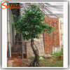 Hot Sale Decoration Artificial Ficus Tree