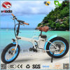 En15194 250W Fat Tire Folding Electric Beach Bike for Child