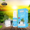Yumpor Fully New Packing and New Flavor Frosty Spearmint 10ml E Liquid